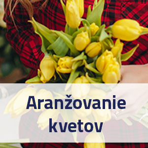 _skola-aranzovania